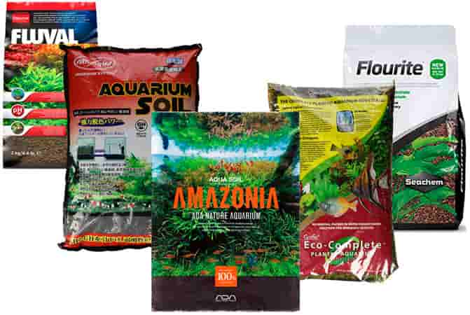 Top 5 Substrates For Planted Aquariums.