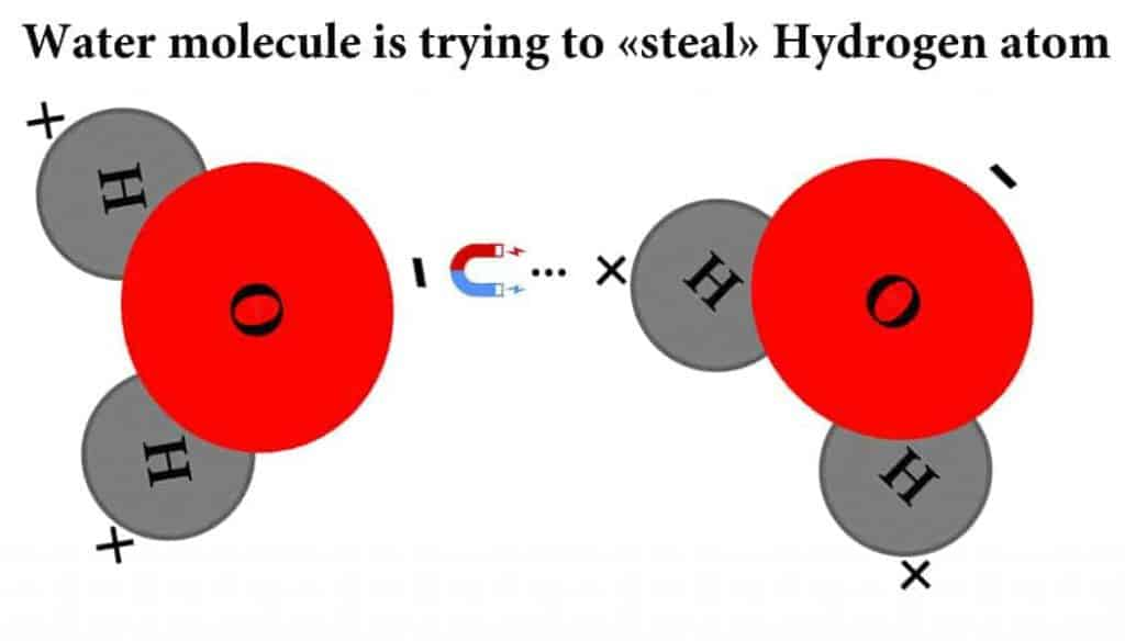 Water molecule is trying to «steal» Hydrogen atom