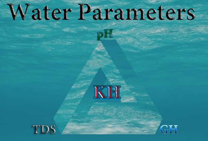 Water parameters KH