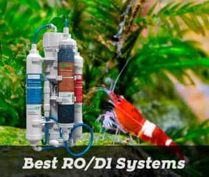 Best RODI system for shrimp tank