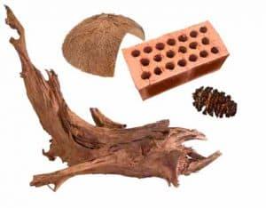 shrimp tank Break, cones driftwood cocnut