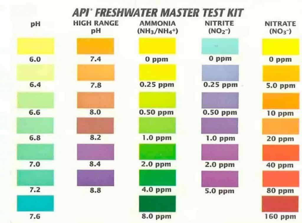 API test chart