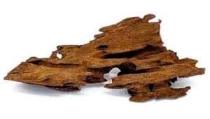 Malaysian Driftwood for shrimp