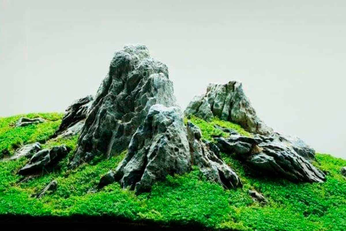 Iwagumi Aquascape Stones main