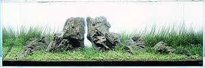 Iwagumi aquascape - Style 6 Twins