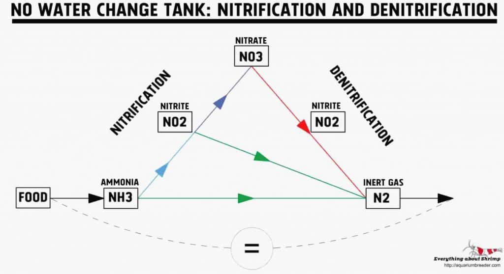 No Water Change Tank Nitrification and DeNitrification