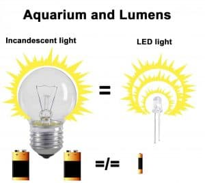 Incandescent bulb vs led lumen