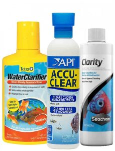What Causes Cloudy White Aquarium Water chemicals