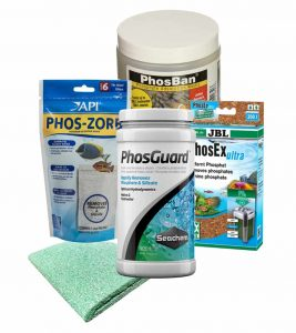 How to Remove Phosphates in Freshwater Tanks