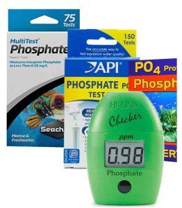 Testing Phosphates in Freshwater Tanks