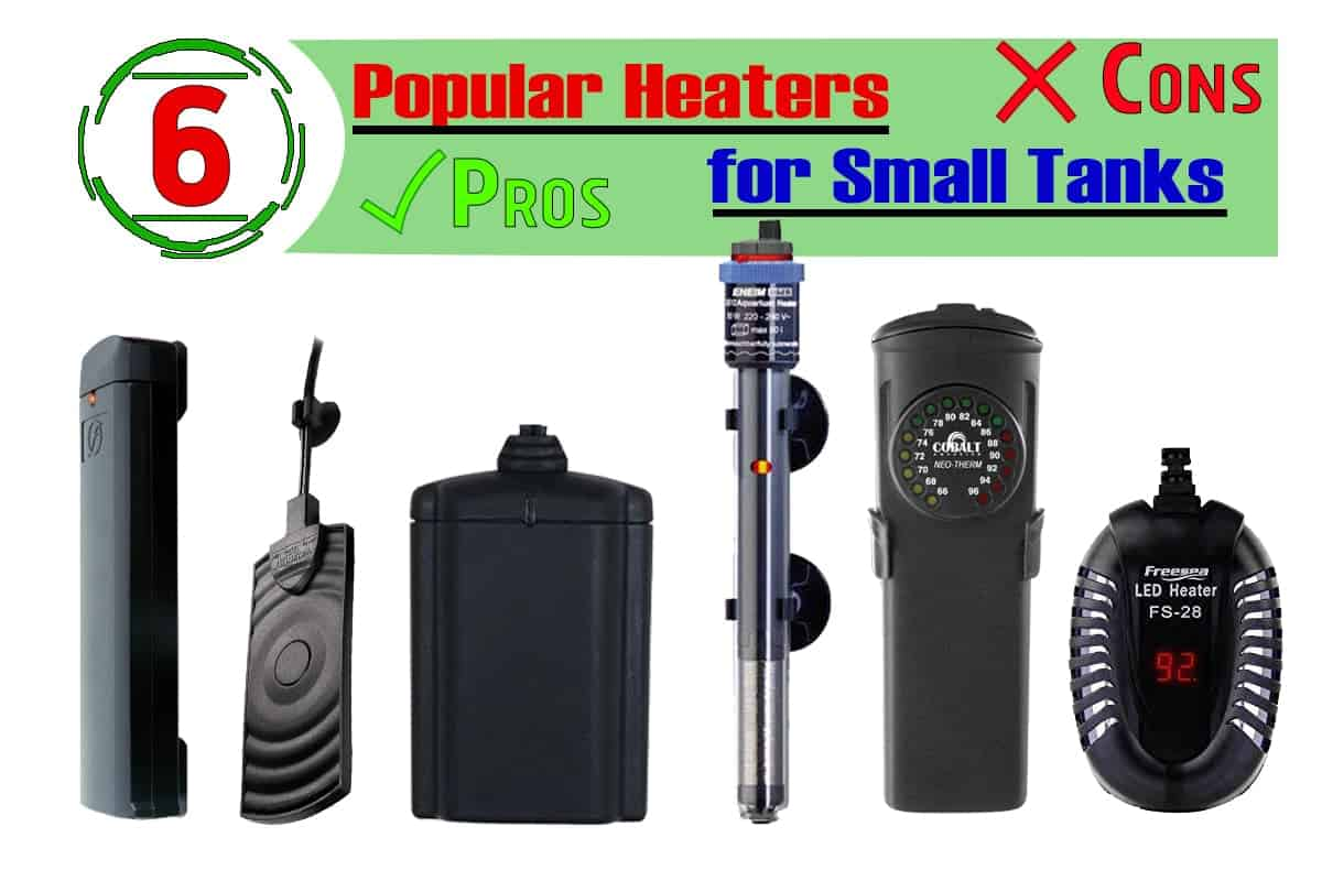 6 Popular Heaters for Small Tanks
